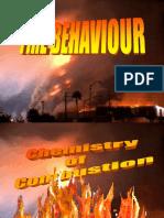 Basics of Fire