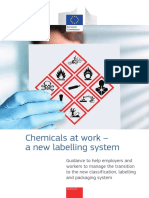 Chemical Labels Guide En