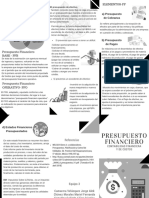 TRIPTICO- Presupuesto Financiero