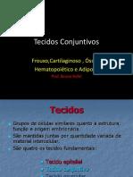 Tecidos Conjuntivos.ppt