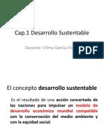 Cap I Desarrollo Sustentable I,II