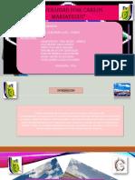 Diapositivas de Pavimentos Clasificacion de Vias en La Regiom de Moquegua