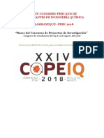 Bases Del Proyecto de Investigacion COPEIQ 2018