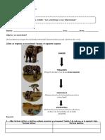 4°-Guía-Los-ecosistemas-y-sus-interacciones