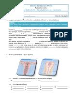 Ficha de avaliação.pdf