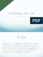 1.8.1 Ojo, Fisiología