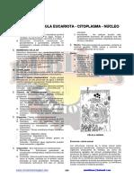docslide.com.br_29934369-citologia-celula-eucariota-citoplasma-nucleo.pdf