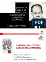 6 Organización Efectiva y Cultura Organizacional