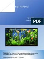 acvariul