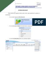 Instructiuni_completare_modul_Activitate_financiara.docx.pdf