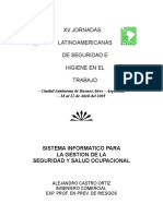 13-Sistema Informatico Gestion de La Seg. y Salud Ocupacion