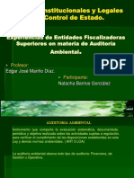 Auditoria Ambiental Internacional