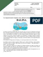 Texto Ballina sexto