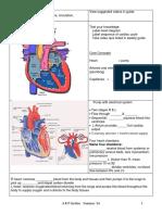 A&P CardiacReview1.docx