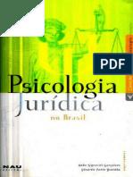 Psicologia Forense Matthew Huss Pdf
