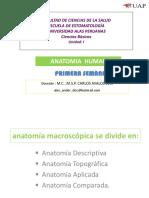 2. Resumen Osteologia - Respiratorio