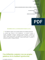 Trabajo Grupal Final _sanidad Agroforestal