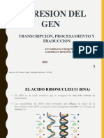 BGM-TRANSCRIPCION 2018.ppt
