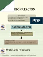 CARBONATACION  estructural.ppt