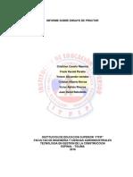 Informe Proctor 1
