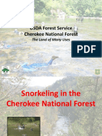 CNF Snorkeling Program