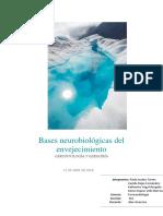Bases Neurobiológicas Del Envejecimient1