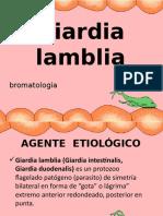 giardia lamblia.ppt