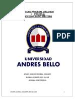 APUNTE OFICIAL PROCESAL ORGÁNICO