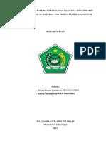 Riska Alfiyatus Kumairoh Dkk _Utilization of Kaffir Lime Skin