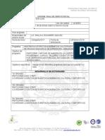 Informe Final de Serv Soc
