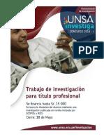 Bases Integradas para titulo profesional-CONCYTEC UNSA