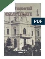 muzeul oltului 1.pdf