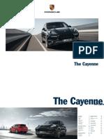 cayenne958-1306