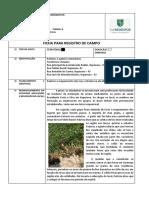 Ficha Para Registro de Campo - Rodolfo Ferreira - Segunda Visita - Microárea 18