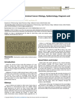Renal Pelvis Ureter and Ureteral Canceretiology Epidemiology Diagnosis Andtreatment