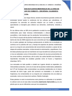BOTANICA-SISTEMATICA-TRABAJO-FINAL.docx