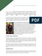 7.1 Mercado de Uvas