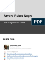 rubronegra-140124040925-phpapp01.pdf