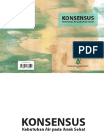 Konsensus Air