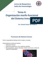 04_Organización Morfo-funcional Del SI_NNP