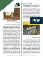 Tema redacional ANGLO [II] 'Efeitos sociais advenientes do [...]' [Extensivo Medicina, 1° semestre, 2017].pdf