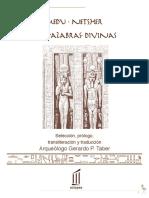 Book-CV - Medu Netsher Las Palabras Divinas v I - Taber Gerardo P