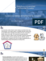 CHANDI.G.MASCOTAS-CONDICIONES DE HABITAT.pptx