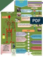 Infografia Medicina Legal