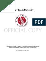 Arikan_grad.sunysb_0771E_10097.pdf