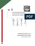 Cuadernillo-anatomofisiologia
