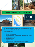 Concesiones Forestales Maderables