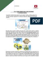 Material Complementario Oido Interno y Cavidad Nasal_d31d312494c34bfd646e72bd9eba5c57