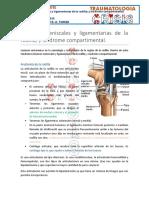 12 Lesiones Meniscales y Ligamentarias de Rodilla y Síndrome Compartimental 22-03-16