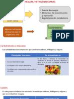 SUSTANCIAS NUTRITIVAS NECESARIAS